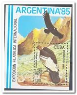 Cuba 1985, Postfris MNH, Birds - Cuba