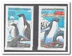 Chili 1993, Postfris MNH, Birds, Penguins - Chili