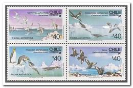 Chili 1986, Postfris MNH, Birds, Penguins - Chili