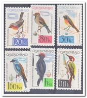Tsjechoslowakije 1964, Postfris MNH, Birds - Tsjechoslowakije