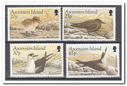 Ascension 1994, Postfris MNH, Birds - Ascension