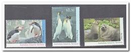 Australisch Antarctica 1994, Postfris MNH, Birds, Penguins - Ongebruikt
