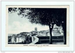 CORTONA PANORAMA AREZZO - Arezzo