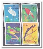 Somalië 1968, Postfris MNH, Birds - Somalië (1960-...)