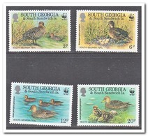 Zuid Georgia, Postfris MNH, Birds - Géorgie Du Sud