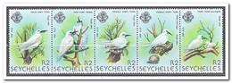 Seychellen 1981, Postfris MNH, Birds - Seychellen (1976-...)