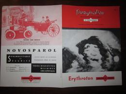L IMAGINATION N 7 PUBLICITE MEDICALE : OISEAU DE TOILETTE,IMAGINATION DU SCULPTEUR,PETIT AIR A MANGER - Advertising
