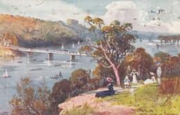 Lane's Cove Sydney Area Australia, Artist Signed Image, C1910s Vintage Tuck #7358 Postcard - Sydney