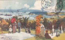 Sydney Australia, Fullwood Artist Signed Image Botanical Gardens & Farm Cove, C1900s Vintage Tuck #7291 Postcard - Sydney