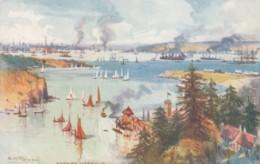 Sydney Australia, Fullwood Artist Signed Image Sydney Harbour From Watsons Bay, C1900s Vintage Tuck #7291 Postcard - Sydney