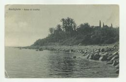 BORDIGHERA - PALME DI SCHEFFEL  - NV FP - Imperia