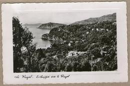 83 / LE RAYOL - Echappée Vers La Côte (années 50) - Rayol-Canadel-sur-Mer