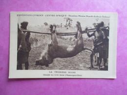 CPA  CENTRE AFRIQUE EXPEDITION CITROEN LA CROISIERE NOIRE CHASSE AU LION DANS L'OUBANGUI CHARI - Centrafricaine (République)
