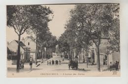 CPA CHATEAUROUX (Indre) - L'Avenue Des Marins - Chateauroux