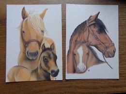 15 Kaarten Met Paarden - Horses (zie Foto's) --> Onbeschreven - Horses