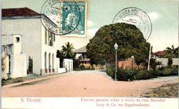 AFRIQUE --  SAO TOME Et PRINCIPE -- Enorme Parasita Sobre O Muro Da Casa Salvador - Sao Tome Et Principe