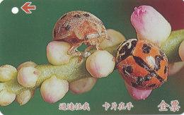 JAPAN Telefonkarte -Marienkäfer -siehe Scan -4512 - Coccinelle
