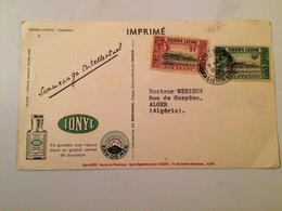 CARTE POSTALE SIERRA-LEONE-LE CAMELEON -PUBLICITE IONYL- - Sierra Leone (1961-...)