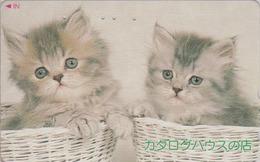 Télécarte Japon / 110-016 - ANIMAL - CHAT Chats - CAT Japan Phonecard - KATZE - GATO - GATTO - 4876 - Katten