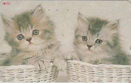 Télécarte Japon / 110-016 - ANIMAL - CHAT Chats - CAT Japan Phonecard - KATZE - GATO - GATTO - 4877 - Chats