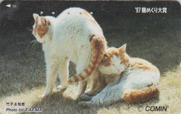 Télécarte Japon / 110-011 - ANIMAL - CHAT Chats - CAT Japan Phonecard - KATZE - GATO - GATTO - 4885 - Gatos