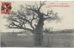 CPA 02 - Bohain - Chêne Brûlé (par Les Espagnols) - Tampon Postal étrange - France