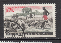 Mali, Mouton, Lamb, Sheep, Berger, Shepherd - Ferme