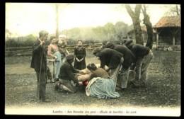 LANDES - Leu Tuouaille Dou Porc B- (heste De Famille) - La Mort - Bernéde, Arjuzanx-6894 - Fermes