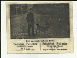 57 - Moselle - Forbach - Frédéric Pelletier - 66 Ans - Marcheur De 66 Ans - - Forbach