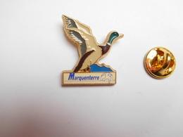 Superbe Pin's , Oiseau Canard , Parc Du Marquenterre , Baie De Somme , Ornithologie - Tiere