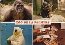 CPM - ZOO DE LA PALMYRE - MULTIVUES - Edition Marcou - Animaux & Faune