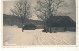 73 // PLAIMPALAIS    Carte Photo, Sous La Neige, Photo Bonnard - Frankreich