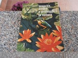 Scoprire, Amare E Proteggere La Natura - Leonardo Aldrovandi - Bambini E Ragazzi