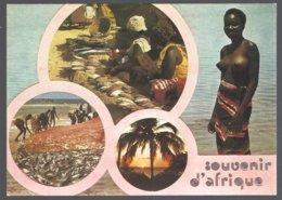 CP 8323-Afrique En Couleurs-Souvenir D'afrique,multivues - Cartes Postales