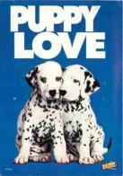 Animaux - Chiens - Dalmatiens - Les 101 Dalmatiens - Walt Disney - Affiche De Film - Cinéma - Voir Scans Recto-Verso - Chiens