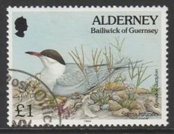 Alderney 1994 -1995 Flora And Fauna £1  Multicoloured SW 81 O Used - Alderney