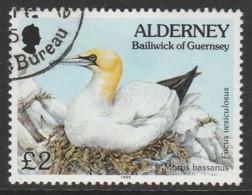 Alderney 1994 -1995 Flora And Fauna £2  Multicoloured SW 82 O Used - Alderney