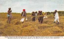 INTERNATIONAL HARVESTER~INDIA-PRIMITIVE METHODS-REAPING HOOK-PENNY A DAY LABORERS POSTCARD 36065 - Culture