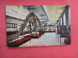Museum  Carnegie Institute  Pittsburgh Pa.  Dinosaur  Ref 3113 - Museum