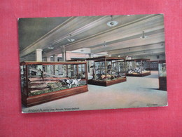 Museum  Carnegie Institute  Pittsburgh Pa.  Ref 3113 - Museum