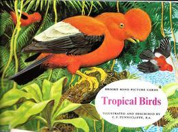 GF706 - ALBUM COLLECTEUR BROOKE BOND TEA - TROPICAL BIRDS - COMPLET - Sammelbilderalben & Katalogue