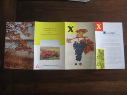PUBLICITE MEDICALE LABORATOIRE HOUDE  MEMENTO X ET Y XANTOPHYLLE ET YOHIMBINE ANNEE 50  60 - Advertising