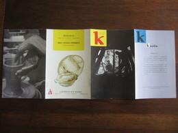 PUBLICITE MEDICALE LABORATOIRE HOUDE  MEMENTO K ET L  KAOLIN ET LITHIASES  ANNEE 50  60 - Advertising