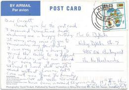 Zimbabwe 1995 Masvingo Swimming Viewcard - Zimbabwe (1980-...)