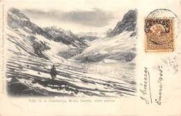 Chili - Oblitérations / 32 - Valle De La Desolacion - Monte Gervin - Chili