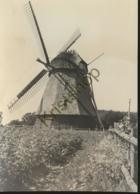 Odense - Den Fynske Landsby - Maderup Møle - Maderup Mill [AA33-0.792 - Danemark