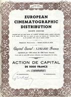 EUROPEAN CINEMATOGRAPHIC DISTRIBUTION; Action Ordinaire - Cinéma & Théatre