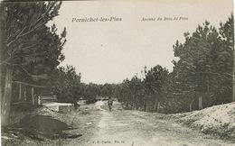 Pornichet (131), Avenue Du Bois De Pins, Jolie Carte - Pornichet