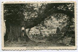 CPA - Carte Postale - Belgique - Daverdisse - La Maison Blanche - 1936  (SV6758) - Daverdisse