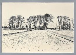 NL.- ALBLASSERWAARD. Houtkade Midden In De Polder. Foto: Atelier Leo Lanser. Giessenburg. - Schone Kunsten